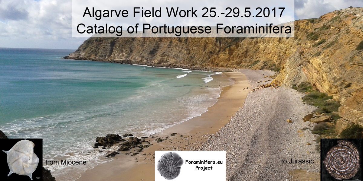 Field Work Algarve